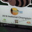 South Asian Spelling Bee -2018 National Champion- Photos